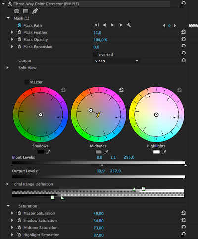 Premire Pro color correction