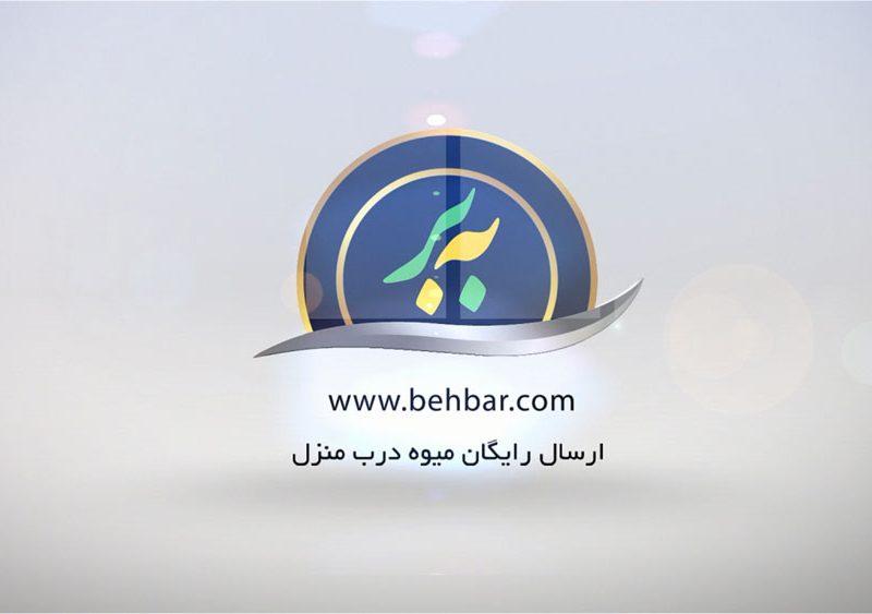 لوگو موشن سایت بِه بار BehBar.com
